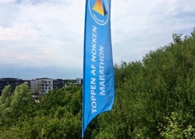 Beachflag 300 cm